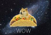 wow-taco